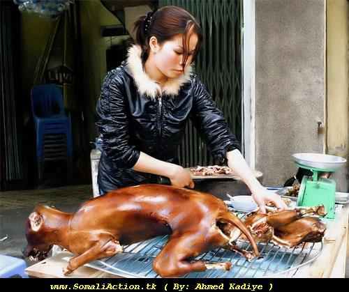 Eey laqalay oo in lacuno la rabo - Malaysia