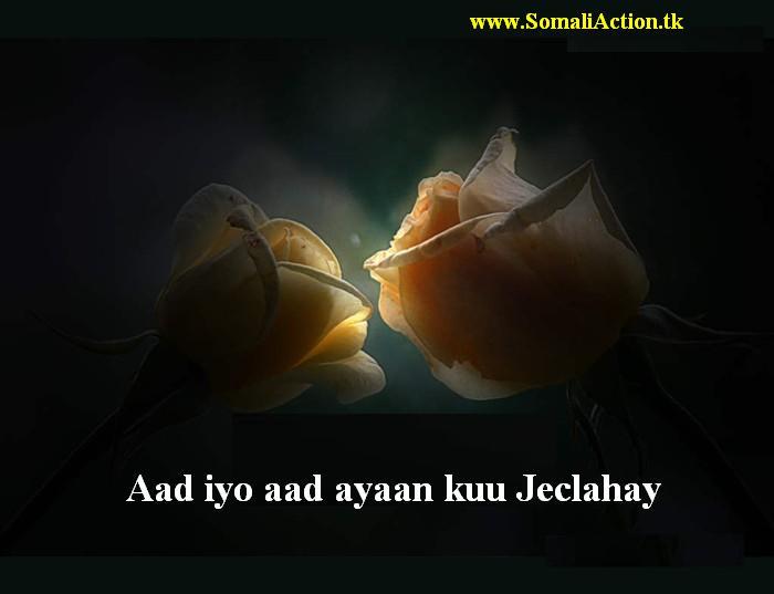 Sawiro Jacayl Related Keywords - Sawiro Jacayl Long Tail ...