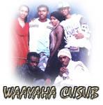 Waayaha Cusub